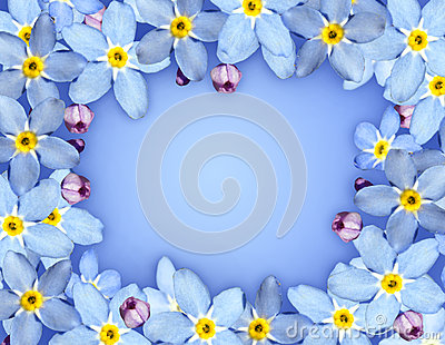 Blue flower frame