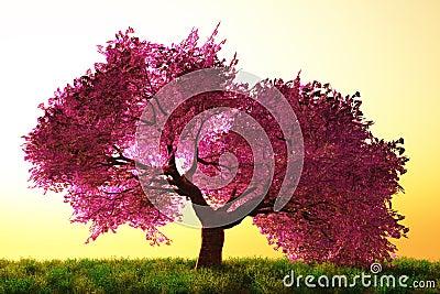Mysterious Cherry Blossoms Japanese Garden cartoon