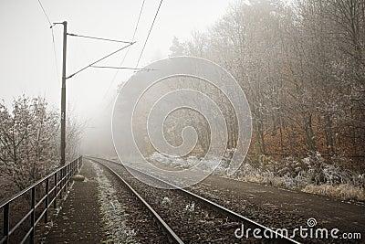 Mystery fog