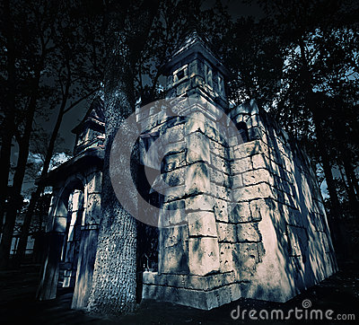 Mystery medieval castle