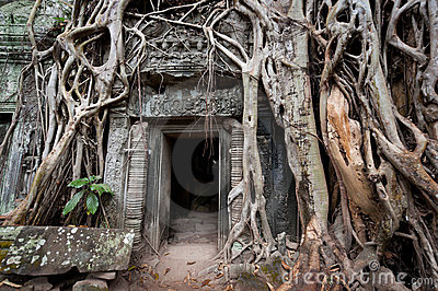 Mystery of Ta Prohm