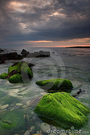Mystic irish coast