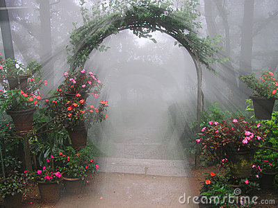 Mystical Flower Entrance