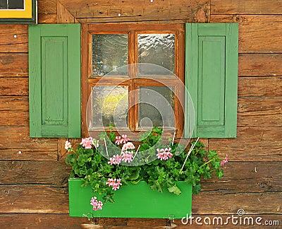 Nätt fönster
