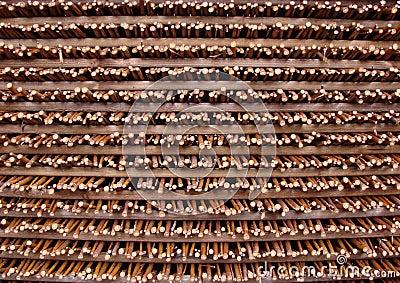 Mönstra - Pil-staket - Bunten Royaltyfri Fotografi - Bild: 29733377