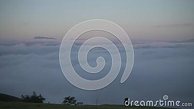 névoa na manhã vídeos de arquivo