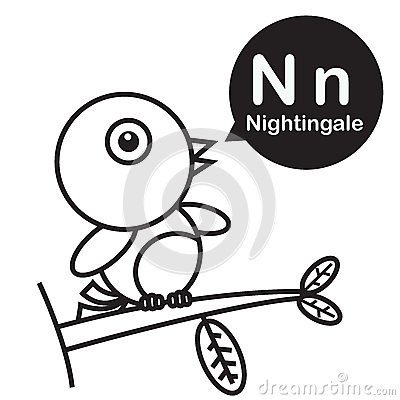 N Nightingale Cartoon And Alphabet For Children To Learning And Cartoon  Vector