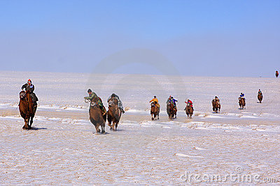 Naadam camel racers Editorial Stock Image