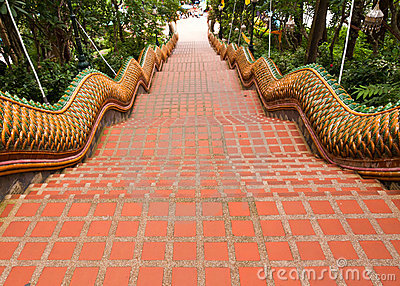 The Naga stairs way down from Wat Doi Suthep