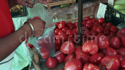 Nahaufnahme, Inder Guy Buys Tomatoes am Basar stock video footage