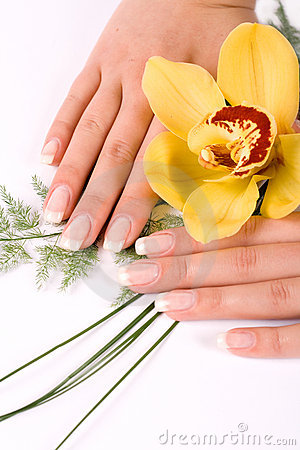 Free Nails With Flower Stock Images - 4194874