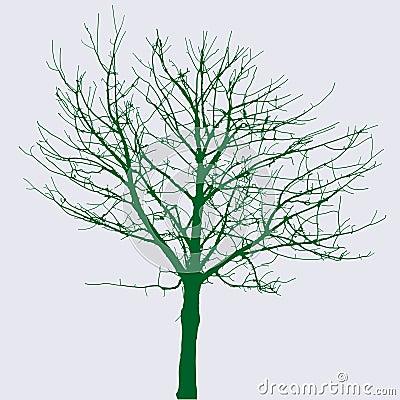 Naked green tree