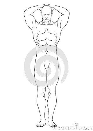 Naked man in the full-length, vector