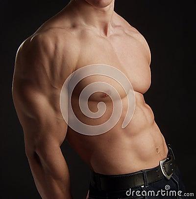 Naked torso of muscular man
