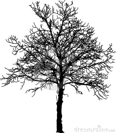Procedurally generated trees in JavaScript