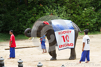 NAKORNPATHOM  THAILAND, June 20:  Elephants play game  performin Editorial Stock Photo