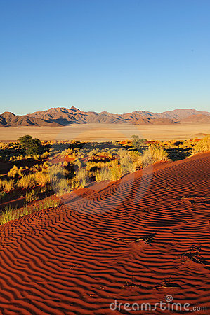 Namib Rand Nature Reserve (Namibia)