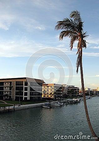Naples Florida Condos