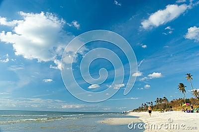 Naples, Florida daylight beach