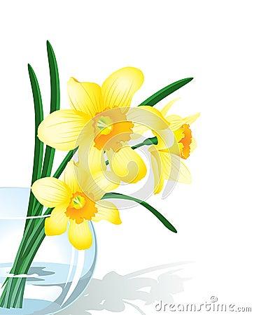 Free Narcissus Stock Photo - 9046270