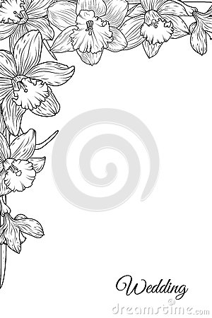 Narcissus daffodil flowers corner frame template Vector Illustration