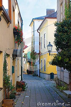 Free Narrow Cobblestone Street, Baden, Austria Royalty Free Stock Photography - 31613507