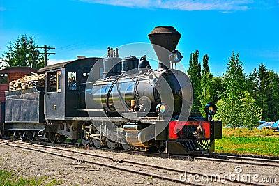 Narrow gauge steam locomotive. Editorial Stock Image