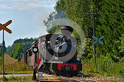 Narrow gauge steam train.