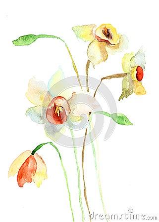 Narzissenblumen
