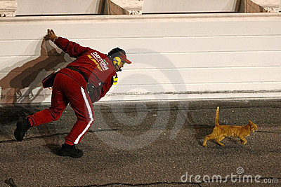 NASCAR Sprint Cup Series Budweiser Shootout Editorial Photo