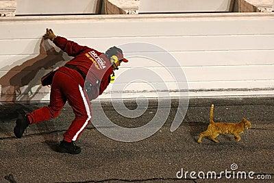 NASCAR Sprint Cup Series Budweiser Shootout Editorial Photo