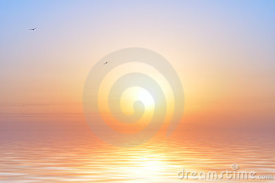 Nascer do sol e pássaros do oceano