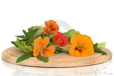 Nasturtium  Flower And Herb Salad Stock Photo - Image: 12592740