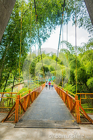 Free NATIONAL COFFEE PARK, COLOMBIA, Yellow Pedestrian Stock Photo - 58458770