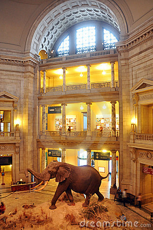 National Museum of Natural History Editorial Stock Image