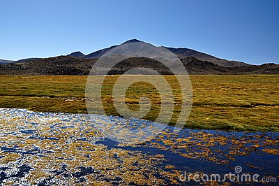 National Park Lauca