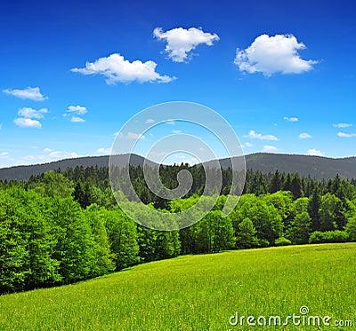 National park Sumava