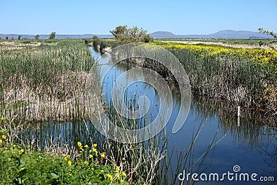 National wildlife refuge & marshes.