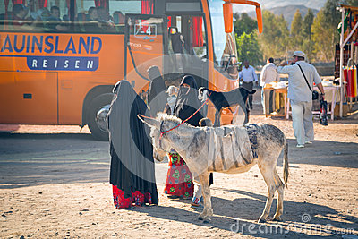 Native arabic women with donkey and goat Editorial Photo