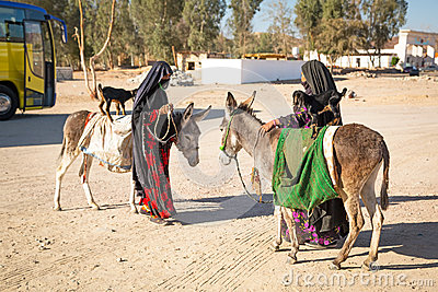 Native arabic women with donkey and goat Editorial Photography