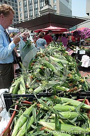 Native Corn on the Cob at Farmer s Market Editorial Stock Image