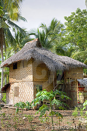Native house of Mandaya tribe