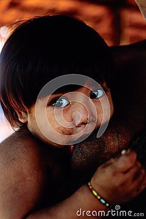 Free Native Indian Awa Guaja Of Brazil Royalty Free Stock Image - 11712346