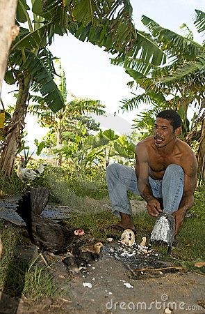 Native man feeding chickens coconut