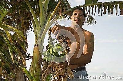 Native Nicaragua man with banana plantains