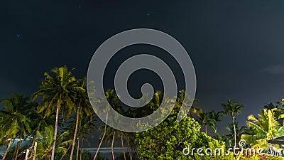 Nattstormen över palmstrandtid förfaller arkivfilmer
