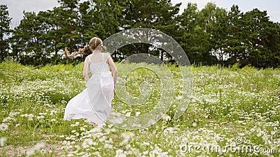 Natur Mädchen-Daisy Lawn Rotate Field Blooms im Freien stock video footage