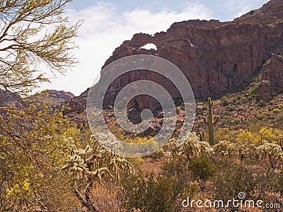 Natural arch in desert vista