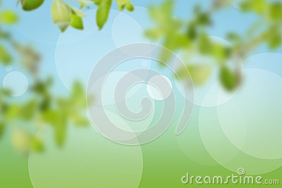 Natural background made of greenery