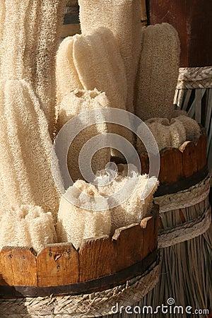 Natural bath sponge. Egypr